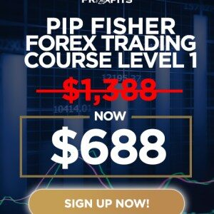 Forex Trading Course by Adam Khoo - Pip Fisher