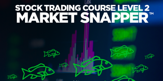 Stock Trading Course Level 1: Market Snapper by Adam Khoo