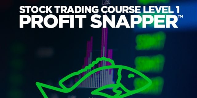 Stock Trading Course Level 1: Profit Snapper by Adam Khoo