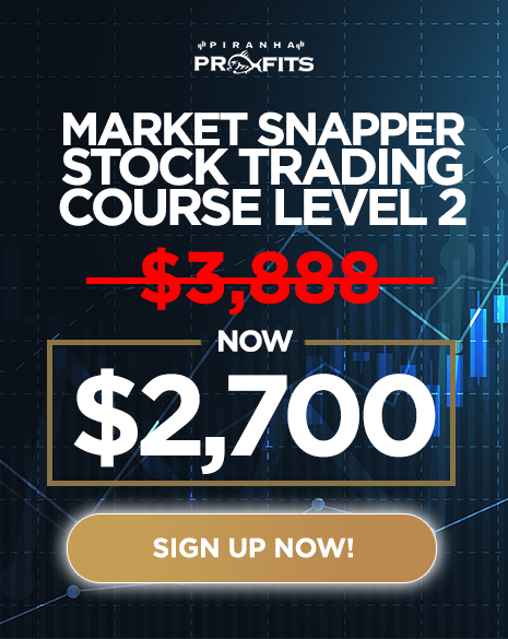 Stock Trading Course by Adam Khoo - Full Course 1