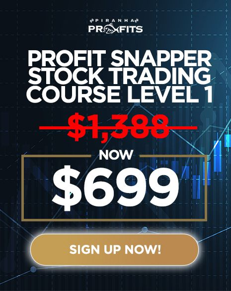 Stock Trading Course by Adam Khoo - Full Course 2