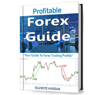 Profitable Forex Guide