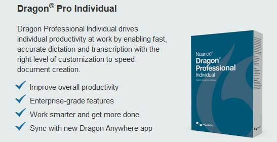 Nuance Dragon Professional Individual 15.6